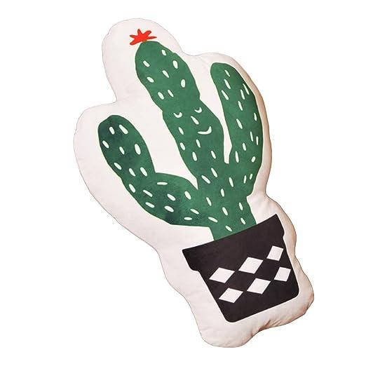 beiguoxia piña Cactus doble cara impresión manta decorativa ...