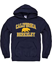 5eb5740a2f82 Campus Colors NCAA Adult Arch   Logo Gameday Hooded Sweatshirt - Multiple  Teams