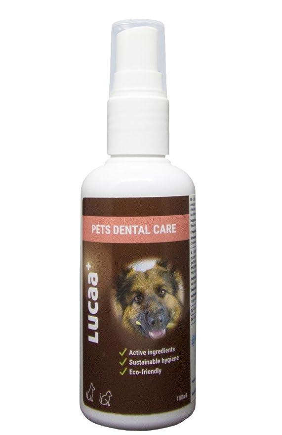 LUCAA+ Limpiador para Dientes 100ml | Higiene Dental | Mascotas/Perros/Gatos | Con Probióticos | Bio, Vegano & Natural: Amazon.es: Productos para mascotas