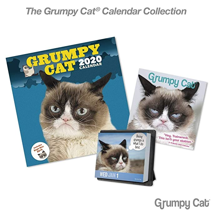 Grumpy Cat Calendar 2020 January Amazon.: 2020 Grumpy Cat Year In A Box Calendar (LMB2470020