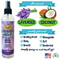 New Waterless Dog Shampoo | All Natural Dry Shampoo for Dogs or Cats No Rinse Required | 100% Non-Toxic with Natural Extract | Vet and Pet Approved Treatment - Made in USA - 1 Bottle 8oz (240ml)