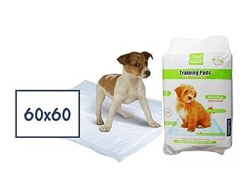 Alfombrillas higiénicas 60 x 60 cm - Traverse de celulosa, tela anti olores absorbente con capa plastificado, para perros y gatos (10 piezas): Amazon.es: ...