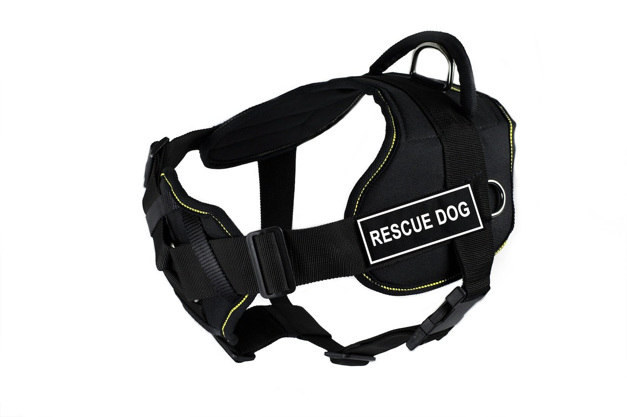 Dean & Tyler DT Fun Rescue Dog  Dog Harness with Padded Chest Piece, Fits Girth Size 32-Inch to 42-Inch, Large, Black with Yellow Trim