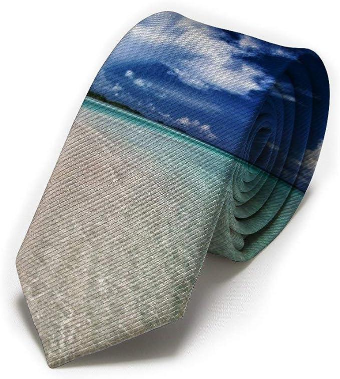 GZOSWLGS Sunny Day Beach Seaside Scene Corbata clásica para ...