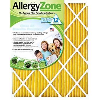 AllergyZone AZ14251 Air Filter for Allergy Sufferers, 14 x 25 x 1""