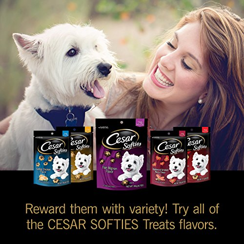 Picture of Cesar Softies Filet Mignon Flavor Dog Treats - 6.7 Oz. 75 Treats (Pack Of 8)