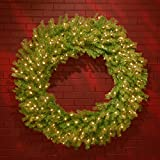 National Tree 48 Inch Norwood Fir Wreath with 200 Clear Lights (NF-48WLO)