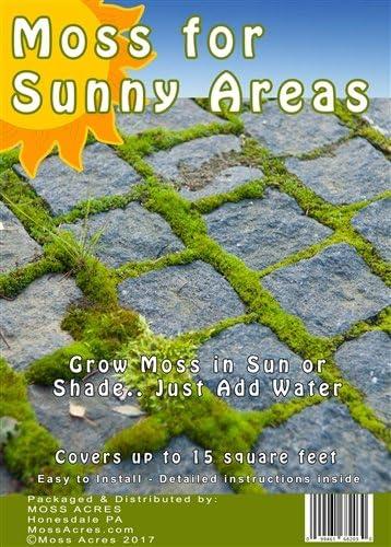 Amazon Com Sun Moss Retail Pack Garden Outdoor