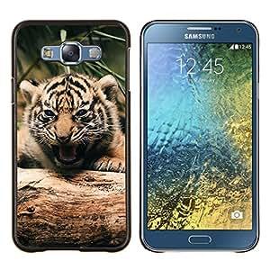 Caucho caso de Shell duro de la cubierta de accesorios de protección BY RAYDREAMMM - Samsung Galaxy E7 E700 - Tigre lindo bebé