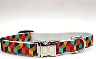 product image for Block Party Bright Dog Collar XS/S