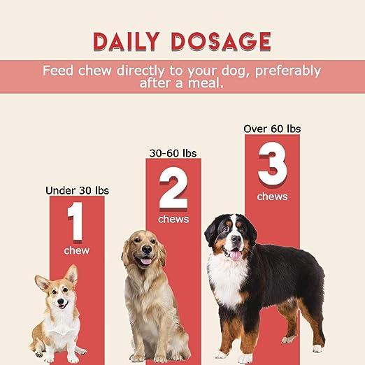Amazon.com: Healthy Pets Proflora Plus Probiotic for Dogs ...