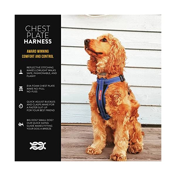 EzyDog Premium Chest Plate Custom Fit Reflective No-Pull Padded Comfort Dog Harness – Perfect for Training, Walking, and… Click on image for further info. 2