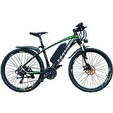 "ROULIK INIZIO E-Bike | 26"" Alloy Frame, 250W 30Nm Rear Hub Motor"