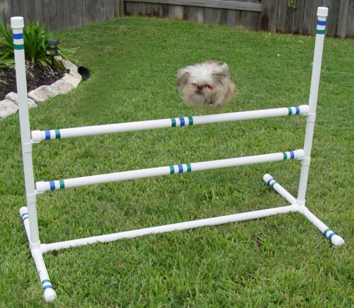Dog Agility - 3 Single Double-Bar Jumps by Weave Poles