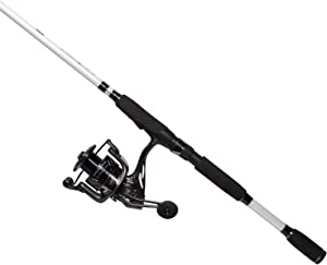 CC5 Spinning Combo Fly Rod