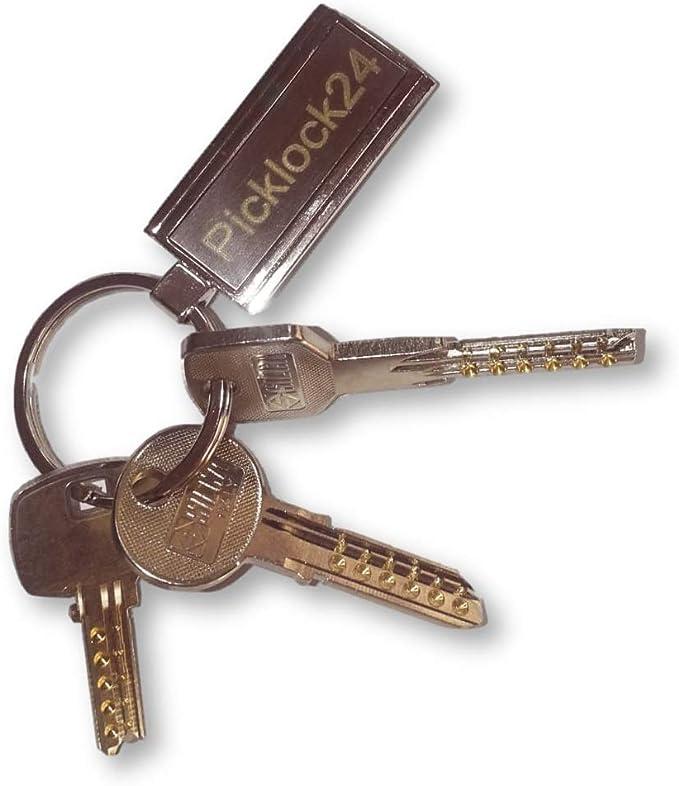 Picklock24. Juego de llaves maestras multipunto válidas para ...