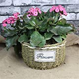 EXDJ Pure handmade straw flower pot wicker Flower Basket rattan Creative Decoration basket,C,24x14cm