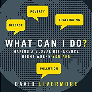 What Can I Do? Audiobook