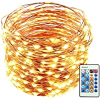 LUCKLED 66ft 200 LED Starry String Lights Dimmable with Remote Control, Waterproof Decorative Copper Wire Lights Lighting for Home, Garden, Bedroom, Patio, Wedding and Party Decorations (Warm White)