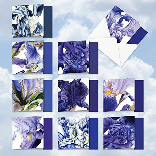 MQ4949OCB-B1x10 Iridescent Iris: 10 Assorted Blank Note Cards Featuring Silky Images of Iris Flower Petals, with (Petal Envelopes)