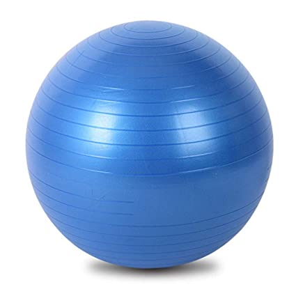 Amazon.com: HONGNA Explosion-Proof Yoga Ball 55cm PVC ...