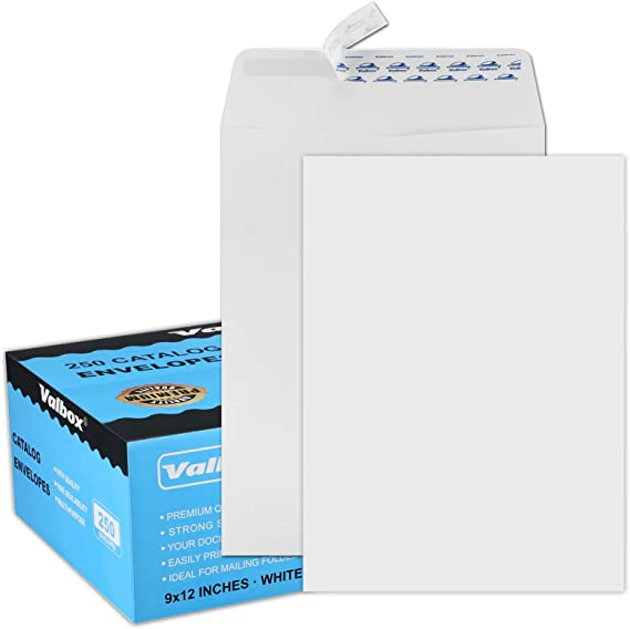 Security Tinted Peel /& Seal Ultra White Wove 37115-76 Blake Premium Office Catalog Open End Expansion Envelopes 9 x 12 3//4 x 1 Inches - Pack of 100