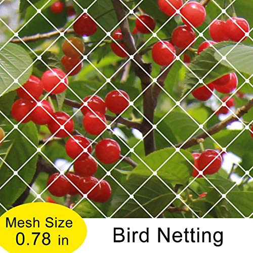 Agfabric Garden Bird Netting Anti Bird Protection Net Fruit Vegetables Flower Garden Pond Netting, 25x100ft, White