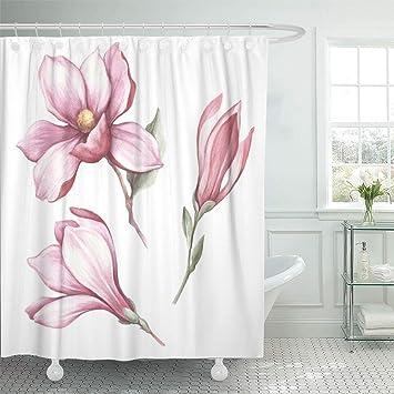 Amazon Com Abaysto Purple Flower Of Blooming Magnolia Hand Draw
