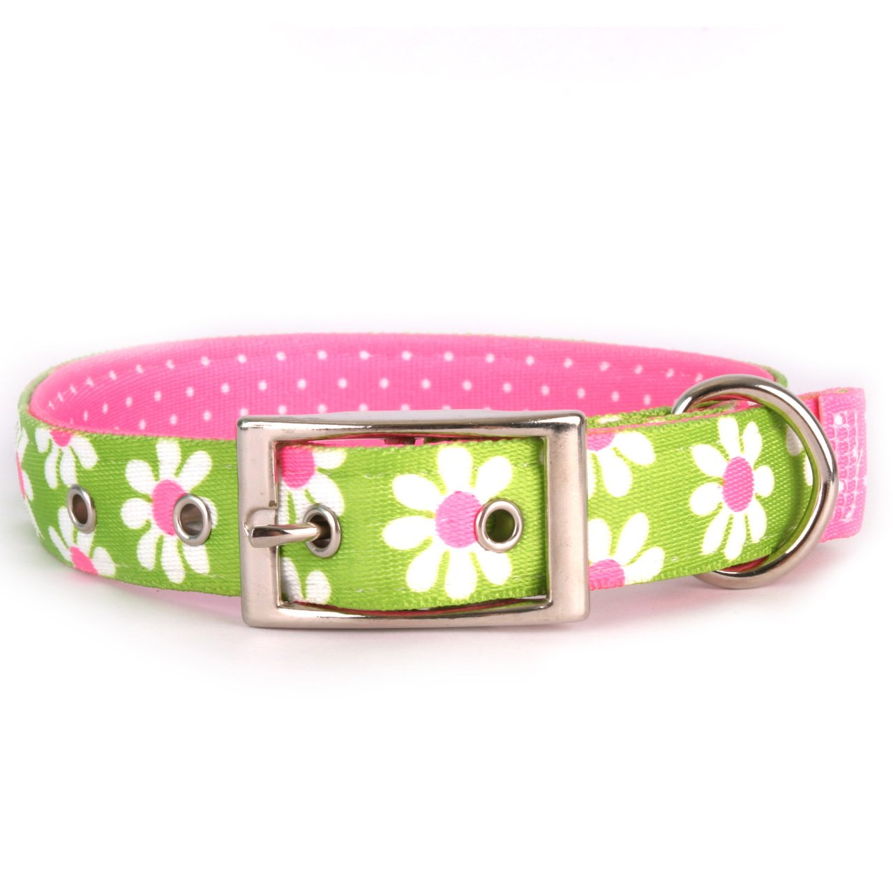 Yellow Dog Design Green Daisy Uptown Dog Collar 1'' Wide and Fits Neck 15 to 18.5'', Medium