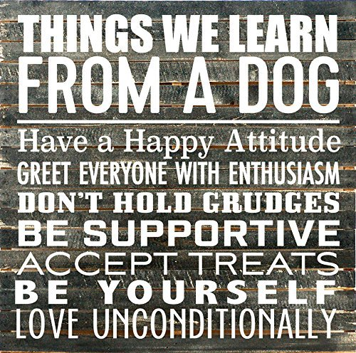 "Artistic Reflections Pallet Art RE1144b Things We Can Learn from A Dog, 28"" x 28"", Black from Artistic Reflections"
