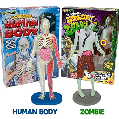The Grossest Guts Bundle: Squishy Human Body and Inhuman Squishy Zombie with 2 Free Storage Bags