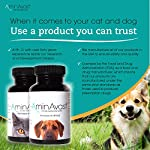AminAvast Kidney Support Supplement for Cats and Dogs, 300mg - Promotes and Supports Natural Kidney Function - Supports Health and Vitality - Easily Administered - 60 Sprinkle Capsules 11
