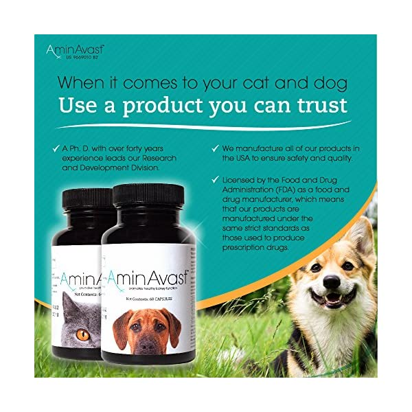 AminAvast Kidney Support Supplement for Cats and Dogs, 300mg - Promotes and Supports Natural Kidney Function - Supports Health and Vitality - Easily Administered - 60 Sprinkle Capsules 4