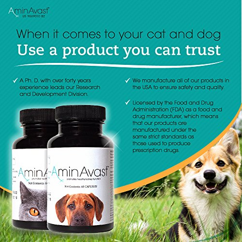 Aminavast Kidney Support Supplement For Cats And Dogs