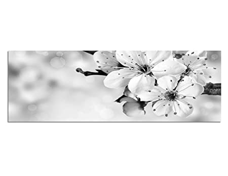 Canvas Photo As Panorama 150x50 Cm Cherry Blossom Summer Black White Pink