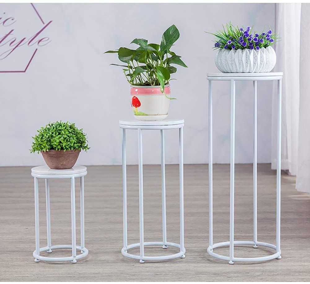 Decorazione aziendale-Supporto per piante alte da interno ...