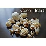 ~Coco Heart~ 白い木の実ミックス Coco Heartオリジナル  (木の実・ドライフラワー)