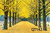 LB Photography Backdrop 7x5ft Vinyl Autumn Scenery Yellow Tree Leaves Decor Customized Outdoor Photo Background Studio Prop Wall Decor QT142
