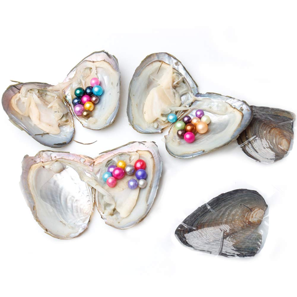 JNMM 5PC Pearl Oysters Freshwater Cultured with 10 Mix Color Round Love Wish Oysters with Pearls Inside 10 Colors (7-8mm), Valentines Mothers Day Birthday Gifts Pearl Wedding Party (Total 50 Pearls) by JNMM