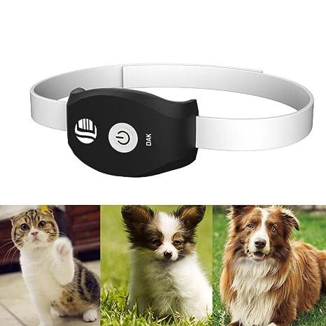 gotd mascotas en tiempo real GPS/GSM Tracker Sistema para gatos perros aplicación gratuita para