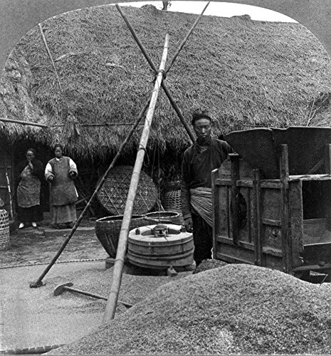 (China Mill C1908 Na Chinese Man Standing Next To A Threshing Machine With A Pile Of Grain In The Foreground And Two Women And A Thatched-Roof Building In The Background Hangchow China C1908 Poster Pri)
