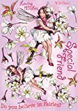Crafter's Companion Flower Fairies Friends Unmounted Cling Rubber Stamps: Wild Cherry