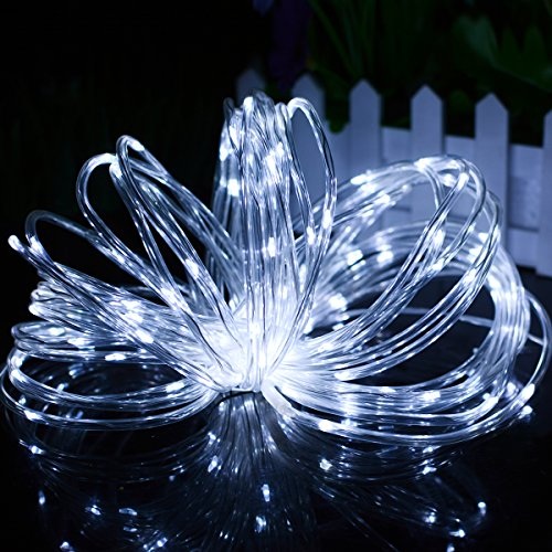 Lalapao Christmas Rope Lights 120 Led Battery Operated