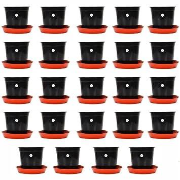 Kraft Seeds Gamla/Planter/Pot 6 (Pack of 24 Pots) (Black Colour Pot) with Bottom Plate/Tray (24 Pcs) SKSPLN033