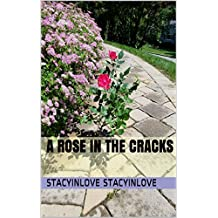 A Rose in the Cracks