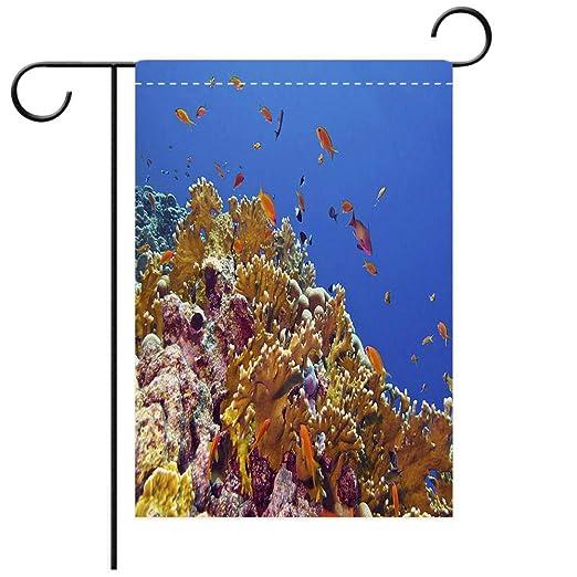Beicici Bandera De Jardín Personalizada Exteriores Arrecife
