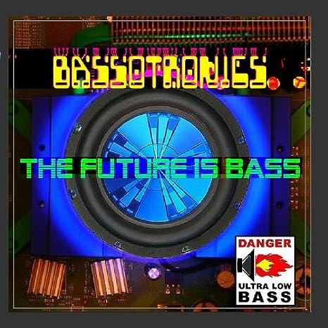 Bassotronics bass i love you mp3 download.