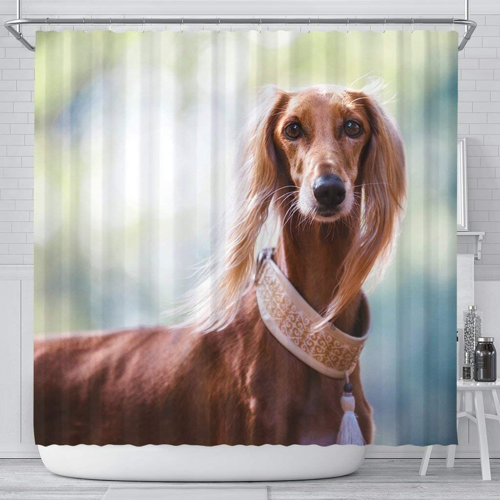 E & E Solution Awesome Saluki Dog Print Shower Curtains by E & E Solution