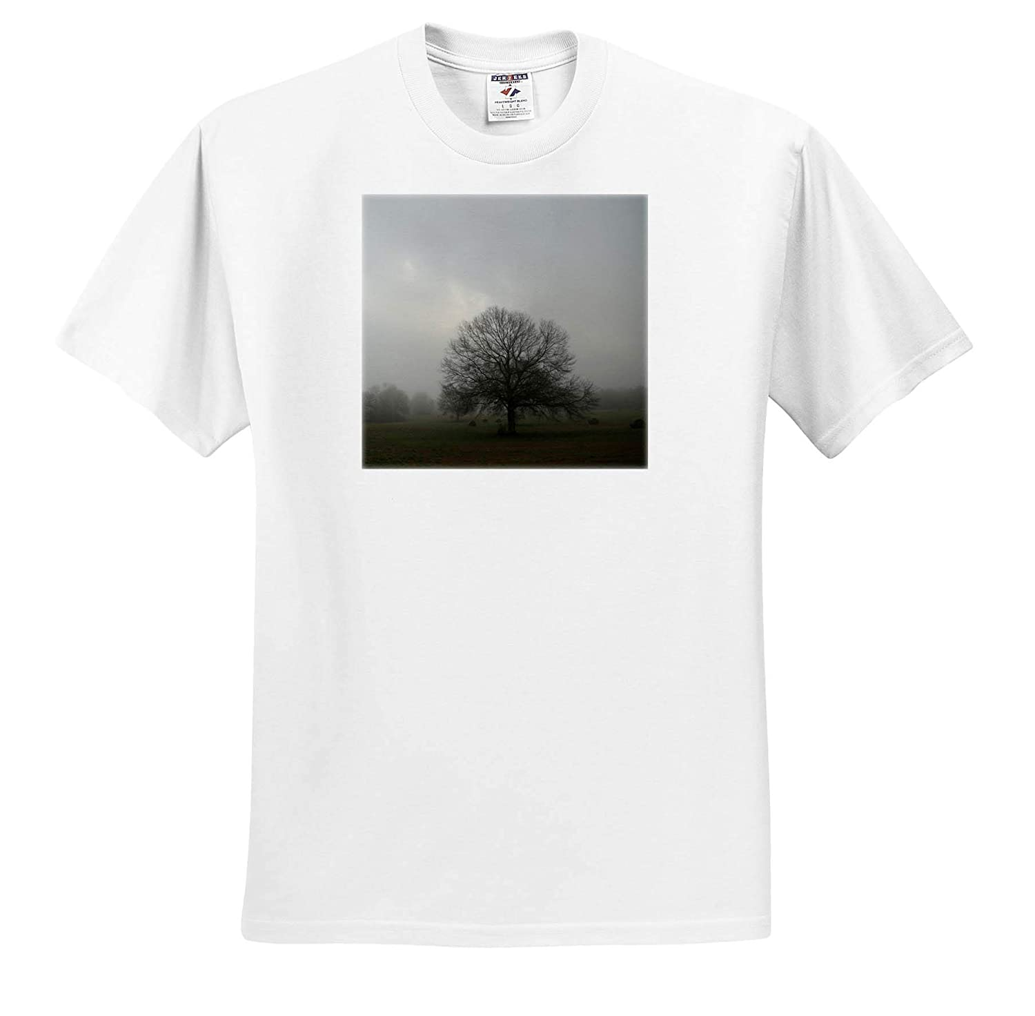 Landscape 3dRose Stamp City - T-Shirts Photograph of a Large Oak and hay Bales on a Foggy Morning in a Field