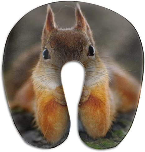 Neck Pillow Travel Pillow Neck Squirrel Inflatable Pillow Inflatable